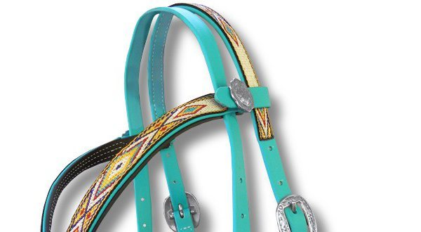 Beta & BioThane Bridles & Halters, Breast Collars , Reins , and Accessories.