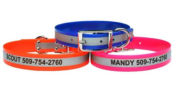 Image of ID collars for dogs.