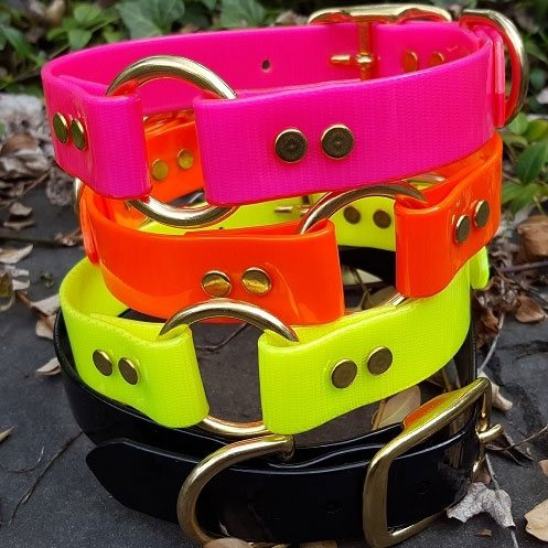 Image of a durable Four Paws Pet Supplies dog collar made from BioThane