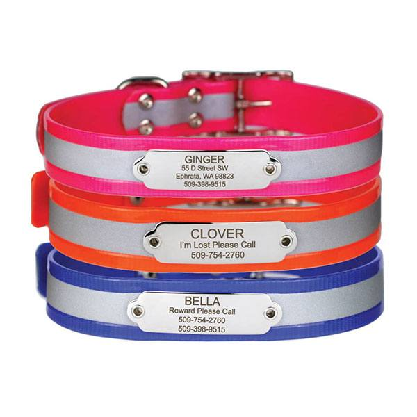 Image of GoTags identification collars for dogs.