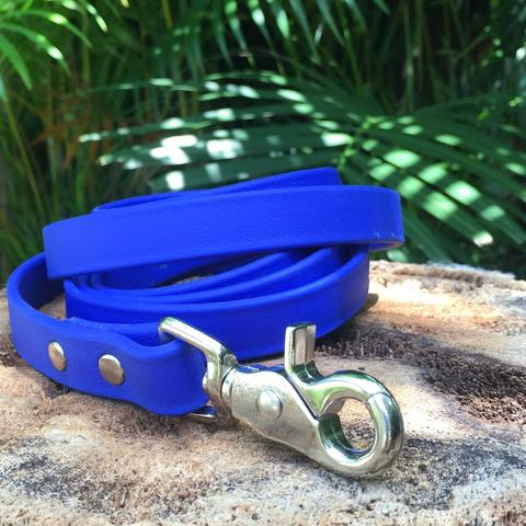 Image of a custom dog leash. Poochie Mama makes personalized leashes for dogs.