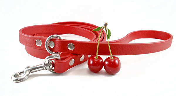Image of a custom dog leash. Dog Walkies makes personalized leashes for dogs.