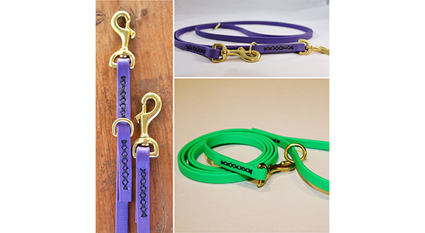 Image of a leash from Mid-Atlantic K9 Services