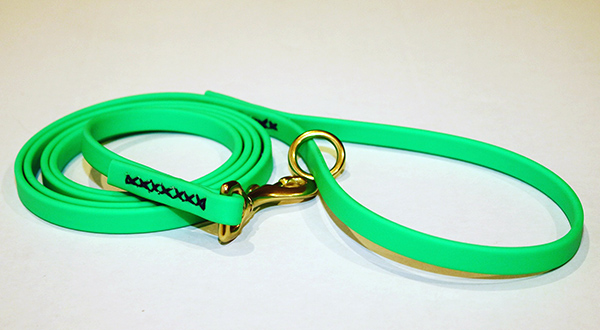 Image of a leash made of coated webbing