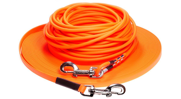 LENNIE-Equipment Leashes
