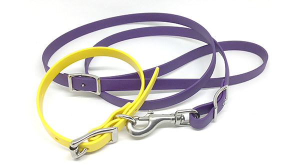 Under Control Yellow and Purple Leash